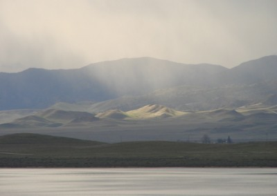 Friends of the Carrizo Plain image