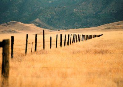 grassland-fence-by-richard-