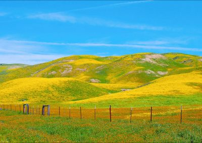 highway-58-leaving-carrizo-plain-by-ester-livinston