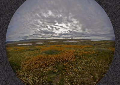 soda-lake-fisheye-by-richar