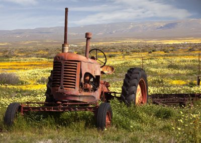 wild-tractor-by-richard-pra